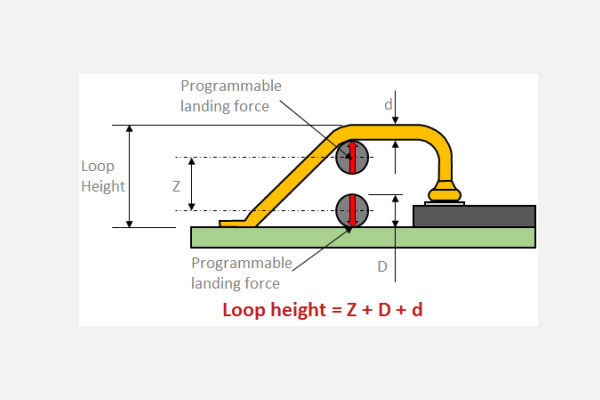 Loop height