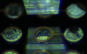 Microscope view: tests 1, 2 and 3